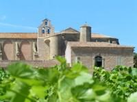 Hérault Abbaye de Valmagne et vigne| proche Gite La Salsepareille