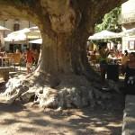 Herault place village de Saint Guilhem le Désert Languedoc Roussillon