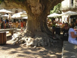 Saint Guilhem square in herault near Cottage La Salsepareille