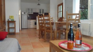 holiday rental languedoc |provence cottage| lounge